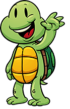 (Bild: Turtle Hello)